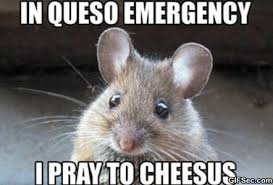 Prayer Meme - in queso emergency pray to cheesus godless mom