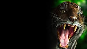 download wallpaper 1920x1080 tiger teeth scary evil full hd