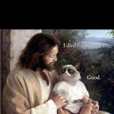 Jesus Cat Meme - jesus healing cat grumpy cat meme see funny images photos