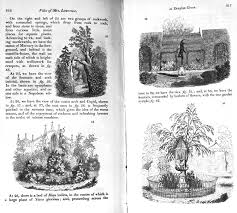 plants and gardens portrayed rare and illustrated books from the