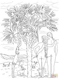 6th day of creation coloring page free printable coloring pages