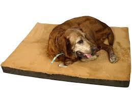 Petsmart Dog Bed Memory Foam Dog Bed U2013 Restate Co