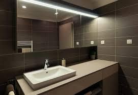 Bathroom Vanity Plus Bathroom 2017 Design Bathroom Dark Bathroom Theme With Modern