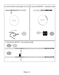 patent us20110104787 fusion peptides that bind to and modify