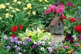 home stonehedge landscape u0026 garden center