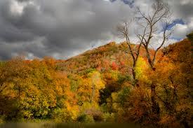submitted peak fall foliage utah u0027s canyons ksl
