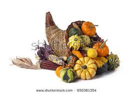 thanksgiving festive cornucopia horn plenty filled stock photo
