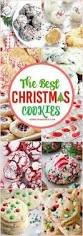 best 25 large party food ideas on pinterest budget party food