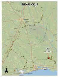 Hunting Gps Maps Bear Maps