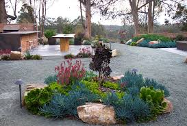 Drought Tolerant Backyard Ideas Succulent Front Yard Ideas Landscape Contemporary With Front Yard