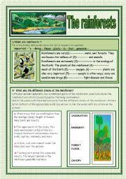 english teaching worksheets rainforests