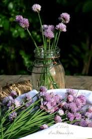 fleurs de ciboulette en cuisine l ecole buissonnière vinaigre de fleurs de ciboulette