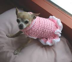 crochet pattern for dog coat chihuahua sweater crochet pattern 25 best ideas about crochet dog