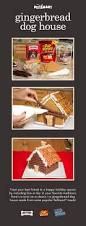 111 best images about dog treats on pinterest homemade dog