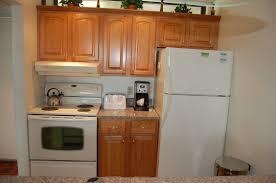 Kitchen Cabinets Premade Prefabricated Kitchen Cabinets Canada Tehranway Decoration