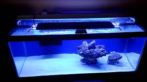 led aquarium lights for reef tanks how to setup a 20 gallon nano reef tank day 2 finnex ray2 db led