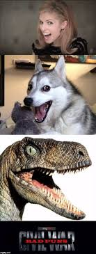 Meme Generator Philosoraptor - imgflip anna kendrick bad pun dog philosoraptor bad puns civil w