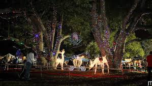 the 24 best ways to see amazing christmas lights in orlando