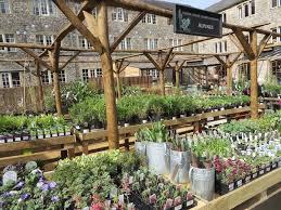 443 best mcd u0027s display ideas images on pinterest gardens