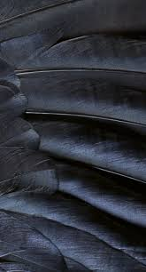 Cool Black Texture Pattern Cool Black Wallpaper Sc Iphone7plus