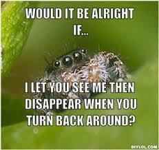 Spider Meme Misunderstood Spider Meme - so uh ok infinitefreetime com