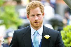 Prince Harry by Prince Harry Would Make A U201cremarkable King U201d Says William And