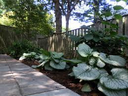 shade garden designs garden design ideas