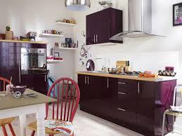 peinture blanche cuisine cuisine leroy merlin aubergine photo 11 20 façades couleur