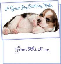 stockwellgreetings wholesale greeting cards birthday wishes