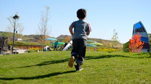 playground equipment and designs landscape structures