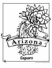 nebraska state flower coloring page coloring home