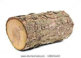 wood logs stock images royalty free images vectors
