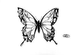 outline of a butterfly coloring