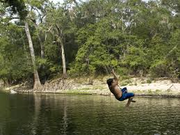 research finding the water rope tree swings fraught with