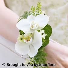 white orchid corsage white orchid fern wrist corsage torquay florist paignton