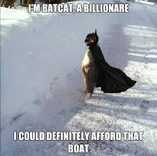 Cat Meme Boat - cat meme boat 28 images meme i should buy a boat jpg i should