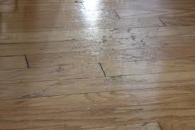 Remove Scratches From Laminate Floor Diy Experiment A Quick Fix For Scratched Hardwood Floors Money