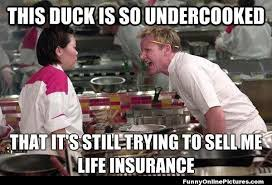 Hells Kitchen Meme - hell s kitchen meme picture
