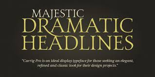 Seeking Font Carrig Pro Webfont Desktop Font Myfonts