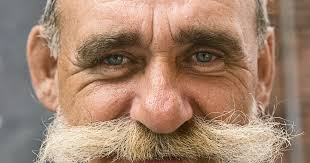how dense should male pubic hair be what are the causes of mustache hair loss livestrong com
