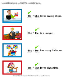 identify she or he worksheet turtle diary