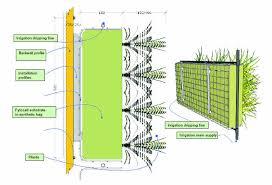 bespoke wall diagram fytogreen
