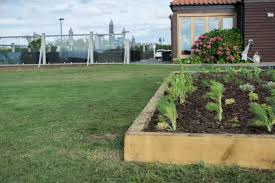 how does your garden grow new herb garden at briarfields