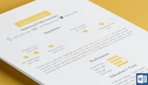 timeline resume template resume templates creative market
