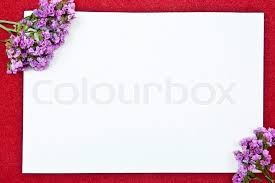 blank greeting cards white paper blank on with flowers design stock photo colourbox