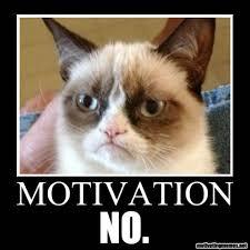 Funny Motivational Memes - motivation meme archives motivating memes