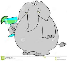 cartoon margarita elephant with a margarita stock illustration image of drink