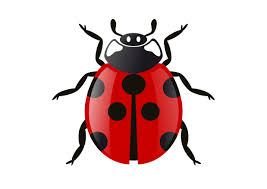 lost garden improving bug triage with user pain clip art library