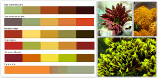 extraordinary fall color combinations stampin u0027 up color