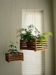 Hanging Planters Indoor by 17 Best Pallet Hanging Baskets Images On Pinterest Hanging